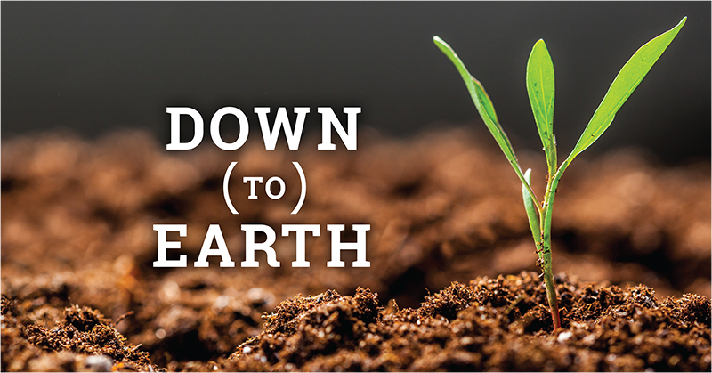 EIS-DOWN-TO-EARTH